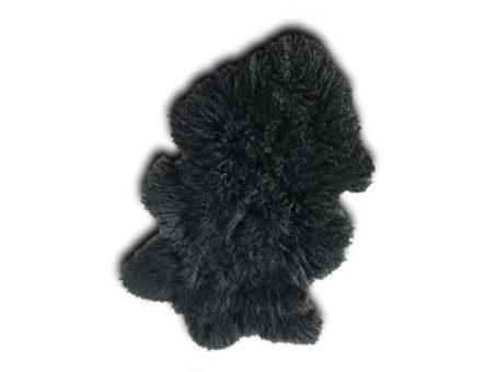 Tibetan Lamb Black